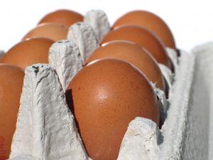 huevos fraudulentos alemania