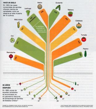 tabla de variedades frutas y verduras desaparecidas